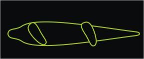 Cómo Usar nuestro Longboard - Postura de Bombeo